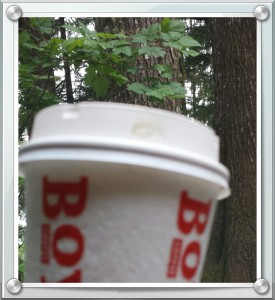 Before pulling into our campground, that would be our home for 3 nights, I found a delicious Americano at Bear Cafe.